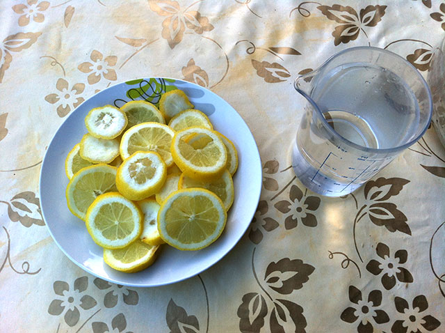 Lemons and Water
