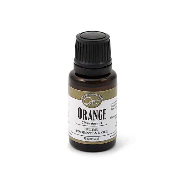 Orange (Citrus sinensis)