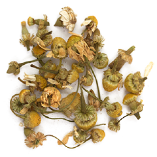 Chamomile German