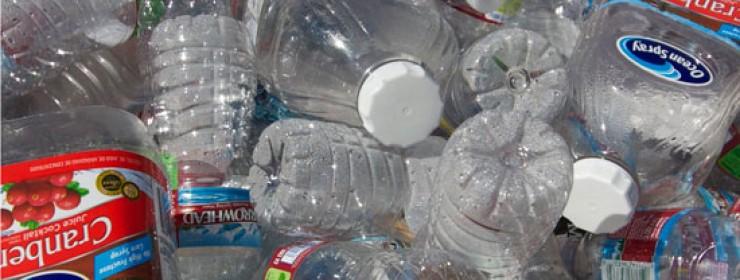 Is Plastic Killing Us?