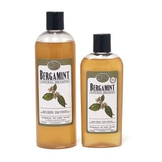 Bergamint Shampoo